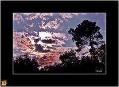 Atardecer (Carolu.) Tags: cielo nubes ocaso nwn carolu toma15
