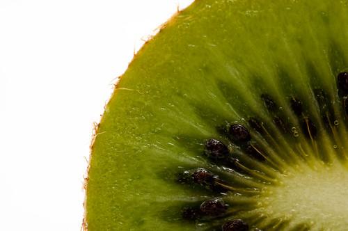 Kiwi Klose-up