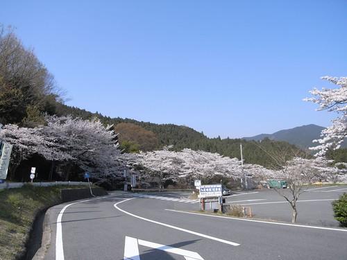09-04-10【桜】@談山神社-04