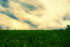 grass and sky (cavale) Tags: life park blue sky 3 green nature beauty nova grass weather clouds spring movement xpro open natural cloudy earth space horizon hill meadow growth grassy