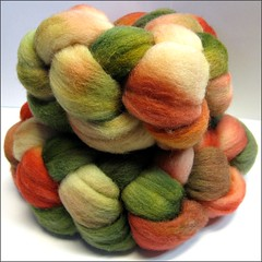 Watermelon Rind 1 (wool top)