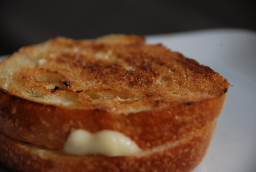 fontina on sourdough for grilled cheese appreciation week