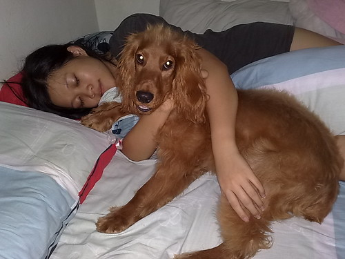 sleeping with dangerous animal