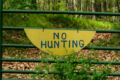 No Hunting Sign 5-9-09 4