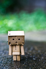 Danbo Walking In The Rain (craigmdennis) Tags: water rain garden walking danbo
