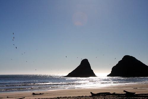 heceta-beach