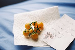 (sylvanwye) Tags: canon garden rebel kodak g tomatoes tasty 200