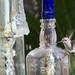 Bottlebird