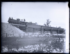 Locomotive 'Murrumbidgee', Dora Creek, NSW, 14 August 1887 (Cultural Collections, University of Newcastle) Tags: bridge train rail railway australia nsw locomotive lakemacquarie railwaybridge railbridge 1887 cocklecreek ralphsnowball snowballcollection ralphsnowballcollection asgn0328b14 locomurrumbidgee newcastleregionnswhistorypictorialworks photographynewsouthwalesnewcastle railroadsnewsouthwalestrains
