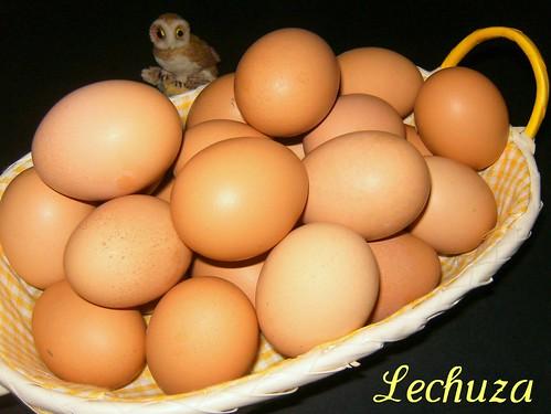 Huevo frito-crudos
