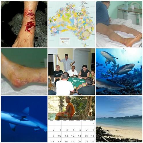 Les photos les plus vues cette semaine : 22 fevrier - 1 mars 2009