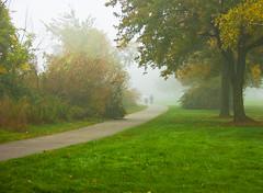 DSC_1566 (mdpayne) Tags: fall boston ma picis october2007