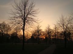 London parks 3