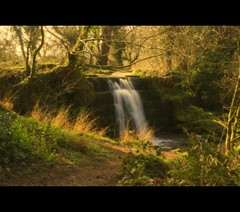 Woodland waterfall (Steel Steve) Tags: waterfall stream rotherham southyorkshire rocheabbey englishheritage aplusphoto steelsteve vosplusbellesphotos