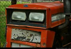 Orange Agrale (Daniel Pascoal) Tags: old orange tractor laranja rusty sjc saojosedoscampos trator antigo parquedacidade agrale danielpg danielpascoal