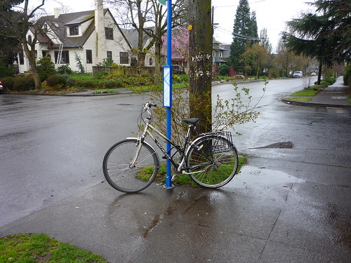 rain bicycle (bus stop)