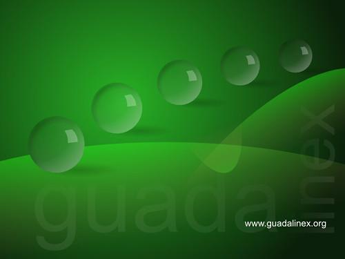Fondo de escritorio logo Guadalinex