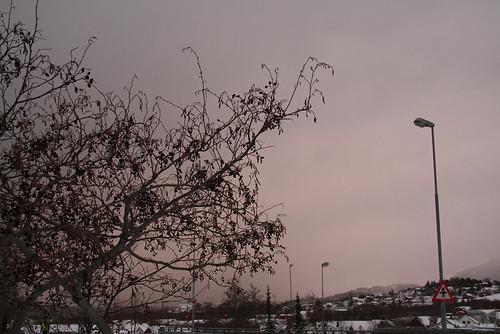 58/365 - Oddly coloured sky