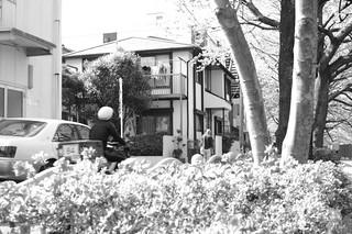町田樹 画像70