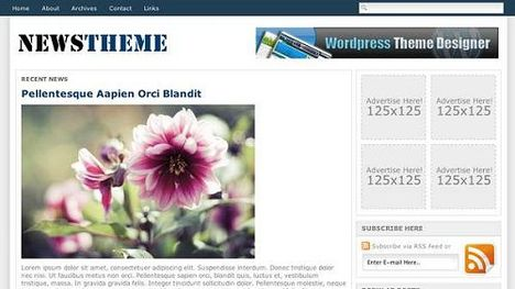 NewsTheme Free WordPress Theme