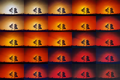Redscale montage 1 () Tags: trees red test film silh