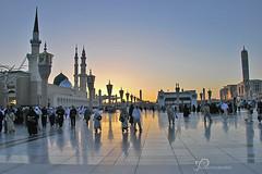 early morning in the Masjid (Ruoxer) Tags: reading worship muslim islam holy saudi arabia scripture masjid quran madinah believers
