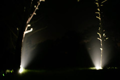 DG video9 (shimoto) Tags: dg dangraham