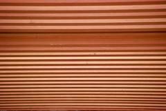 A glimp of wood (Mario Seplveda) Tags: wood santiago naturaleza brown abstract nature caf lines garden de botanical la madera fort mario que minimal botanic minimalism minimalismo abstracto minimalistic sepulveda campeche jardn lineas botnico baluarte seplveda lneas brota seplveda agua tierra xmuchhaltn