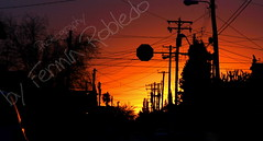 Rojo Amanecer en la Ciudad ( Fermn Robledo) Tags: city shadow red wild urban chihuahua color colour art beauty yellow landscape mexico early calle amazing rojo arte ciudad cable amanecer amarillo cables wires urbano silueta juarez increible callejera mywinners mywinner ferminrobledo