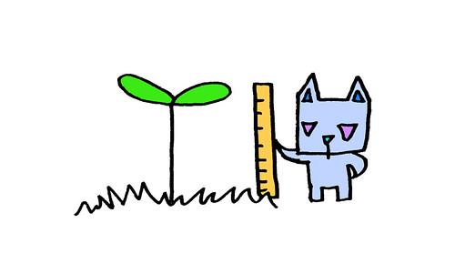 双葉を測る三角うさぎ3