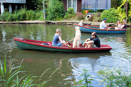 Dog-in-a-Boat