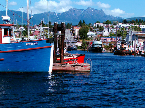 port alberni fishboat harbour