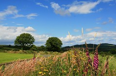 Northeast From Ballygannon (Chris*Bolton) Tags: summer landscape scenery afternoon view searchthebest wicklow soe blueribbonwinner supershot rathdrum bej golddragon mywinners abigfave platinumphoto anawesomeshot ballygannon theunforgettablepictures theperfectphotographer goldstaraward natureselegantshots