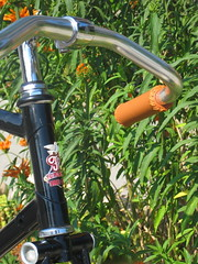 Flying Pigeon Racer Headbadge and Bars (ubrayj02) Tags: bike bicycle bicycling flying pigeon bikes bicycles biking sylvan guvnor pashley mks flyingpigeon cyclechic flyingpigeonla flyingpigeonlacom