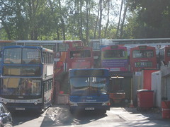 Buses at rest (aecregent) Tags: stagecoachdevon 310509 regentsclose