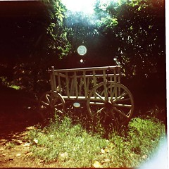 sleepy garden (wendyellis) Tags: france colour xpro fuji slide diana alsace provia lpdamaged