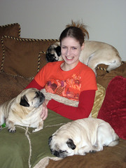 tammy is queen of the pugs