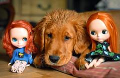 all THREE of my redheads :-)