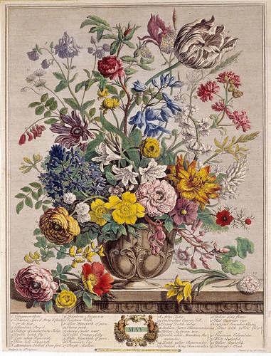 005- Mayo- Los doce meses del año en flores