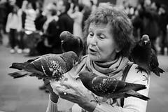 Pombas em Veneza (let's fotografar) Tags: portrait people italy birds veneza italia gente retrato pb venezia pssaros piazzasanmarco pombas 1750mm veneci