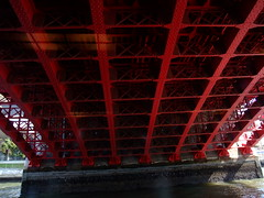 Yakatabune Ride (Tiger Machine) Tags: japan river tokyo boat ride finepix fujifilm sumida yakatabune f100fd