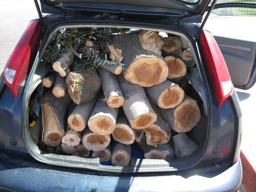 hatchback full of European olive logs