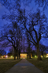 CSU Collegiate Blues (Fort Photo) Tags: blue college night landscape evening vanishingpoint nikon colorado university fort dusk path indigo fortcollins tunnel hour co moonlight elm collins 2009 oval csu elms d300 catchycolorsblue coloradostateuniversity tokina1116