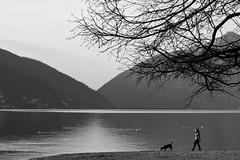 B&W (nepalbaba) Tags: bw lake lago switzerland svizzera lugano magicmoments biancoenero nepalbaba