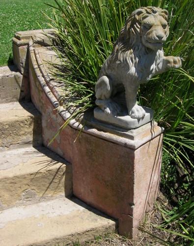 Stone Lion 2 Santa Barbara Zoo