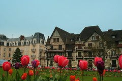 Tulip time! (catb -) Tags: france flower tulip normandie normandy fa halftimbered cabourg colombages