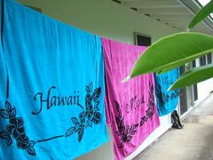 Oahu, Hawaii (nikolieau) Tags: hawaii oahu hawaiioahu
