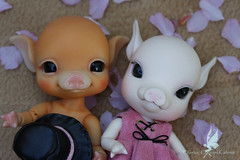 BuBu Odoroki & Alice Cherry Blossom (chartar_69) Tags: asianballjointeddolls charlesstephan charlescreaturecabinet bonekakayu anthroballjointeddolls bubuodoroki