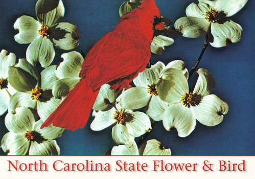 What Are North Carolina State Symbols