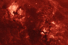Cygnus constellation in Hydrogen-Alpha spectral line. North America, Pelican, Crescent and other emission nebulae. (igorfp) Tags: light sky cloud abstract black hot night america star colorful glow infinity space north over halo pelican crescent gas telescope creation nebula astrophotography astronomy plasma outer alpha universe cosmos blackhole core constellation deepspace brilliance hydrogen celestial shimmer astrophoto emission cygnus nebulae halpha ngc7000 ngc6888 ic5067 narrowband Astrometrydotnet:status=solved competition:astrophoto=2009 Astrometrydotnet:version=11264 Astrometrydotnet:id=alpha20090568035145
